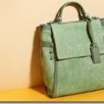GRYSON HANDBAGS AND ACCESSORIES