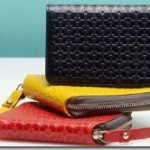 HLASKA WALLETS & SMALL LEATHER GOODS